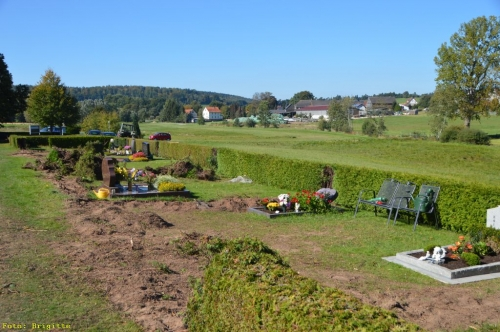 002-Friedhof Neupflanzung 317