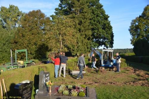012-Friedhof Neupflanzung 334