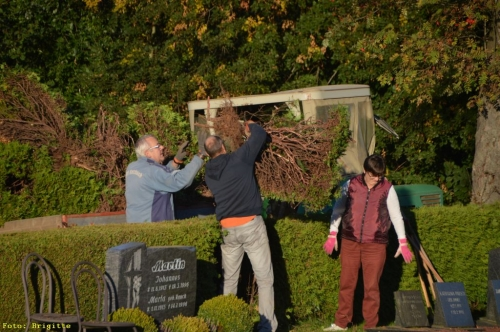 016-Friedhof Neupflanzung 343