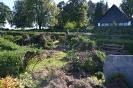 001-Friedhof Neupflanzung 316