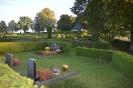 022-Friedhof Neupflanzung 351