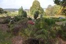 027-Friedhof Neupflanzung 369