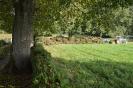 028-Friedhof Neupflanzung 372