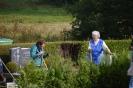 030-Friedhof Neupflanzung 375
