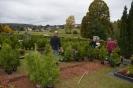 056-Friedhof Neupflanzung 407