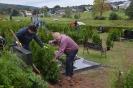 058-Friedhof Neupflanzung 411