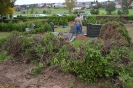 061-Friedhof Neupflanzung 414