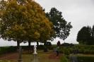 070-Friedhof Neupflanzung 430