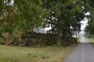 078-Friedhof Neupflanzung 460